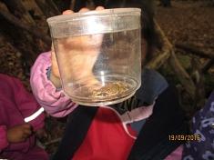 ...und Frösche gefangen©Kindergarten Tausendfüßler