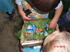 Der Schatz ist gefunden©Kindergarten Tausendfüßler