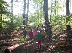 Der Wald wird erkundet©Kindergarten Tausendfüßler