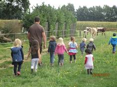 Die Kühe sind los©Kindergarten Tausendfüßler