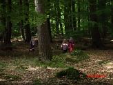 Erkundung©Kindergarten Tausendfüßler