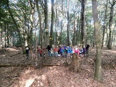 Polonäse durch den Wald©Kindergarten Tausendfüßler