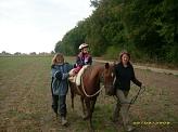 Pony im Wald©Kindergarten Tausendfüßler
