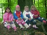 Wieder im Wald©Kindergarten Tausendfüßler