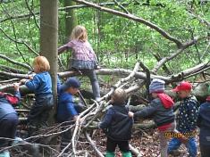 Wir erobern den Wald©Kindergarten Tausendfüßler